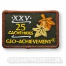 Patch 25 Hides Geo-Achievement