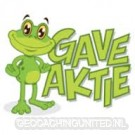 Geocaching - Action -