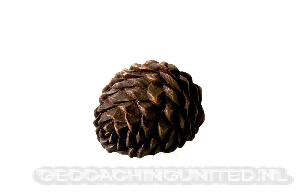 Fir Cone Geocache