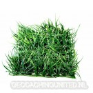 Geocaching Camouflage Grass