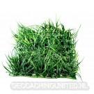 Geocaching Camouflage Grass